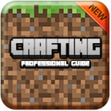 Crafting Guide Professional